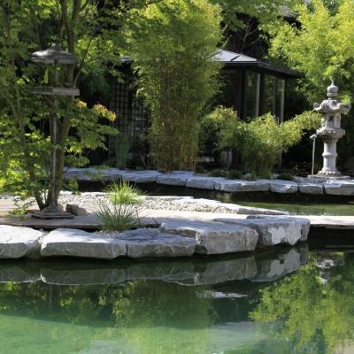 Wellness Garden - Swimming Pool Zen Area