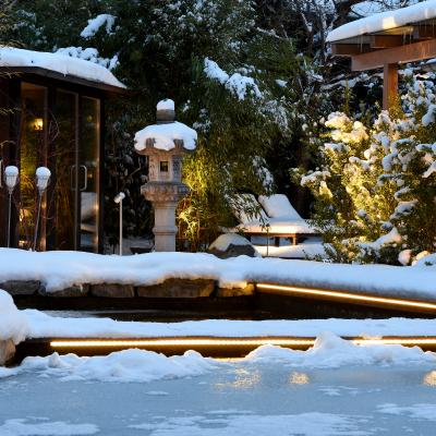 Wellness Garden Winter 2017 Zen Lantern